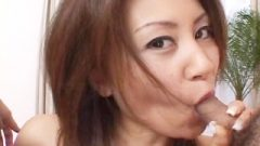 Close-up With Hairy Thai Cunt Licked